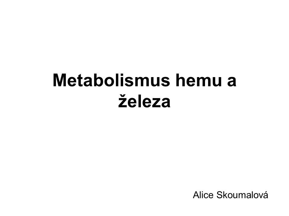 Metabolismus hemu a železa