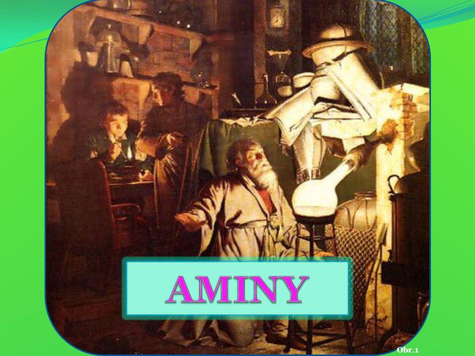 AMINY Obr.1