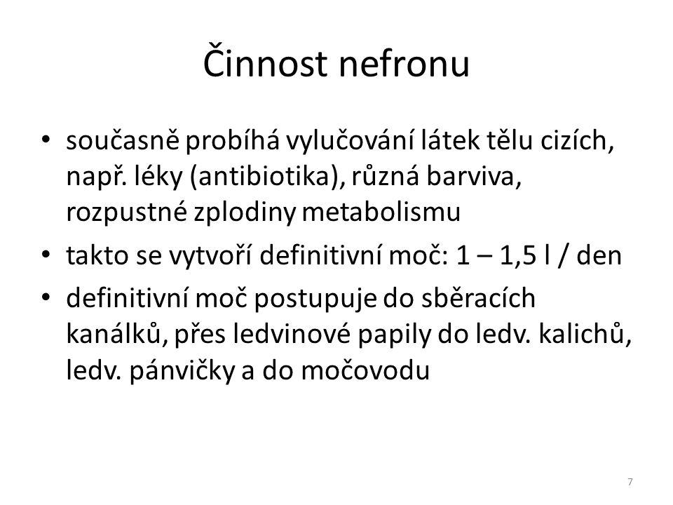 Činnost nefronu současně probíhá vylučování látek tělu cizích, např. léky (antibiotika), různá barviva, rozpustné zplodiny metabolismu.
