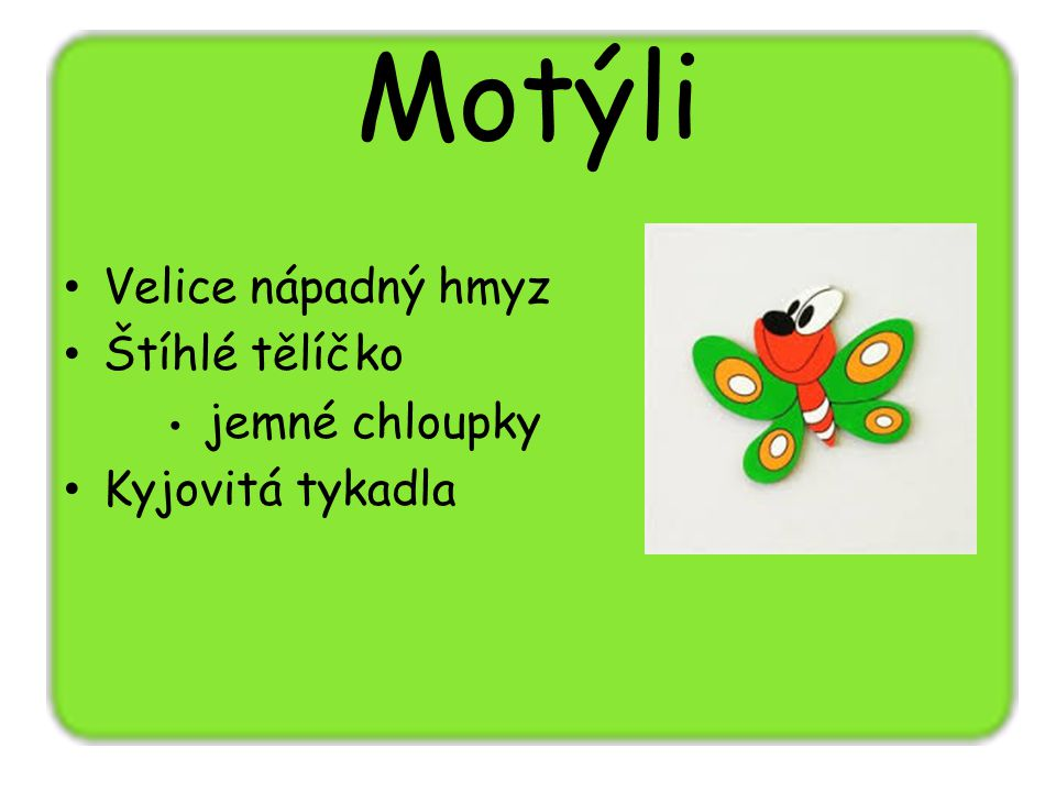 Motýli Velice nápadný hmyz Štíhlé tělíčko Kyjovitá tykadla