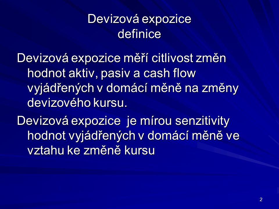 Devizová expozice definice