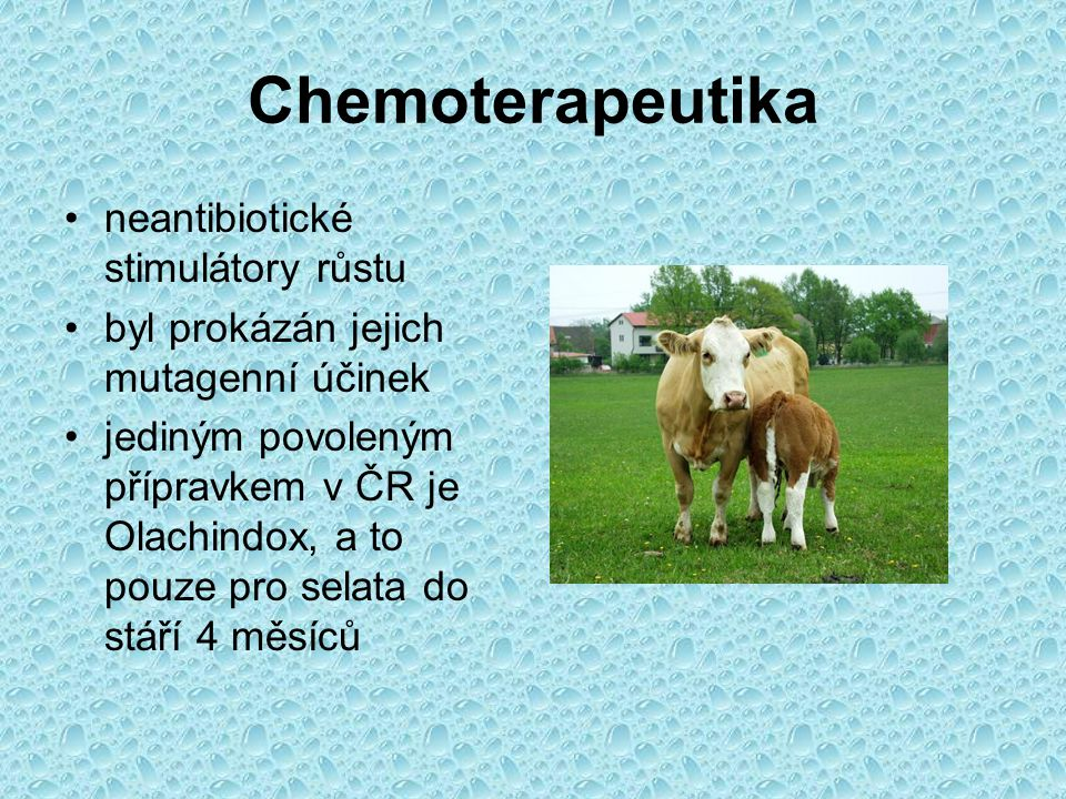 Chemoterapeutika neantibiotické stimulátory růstu