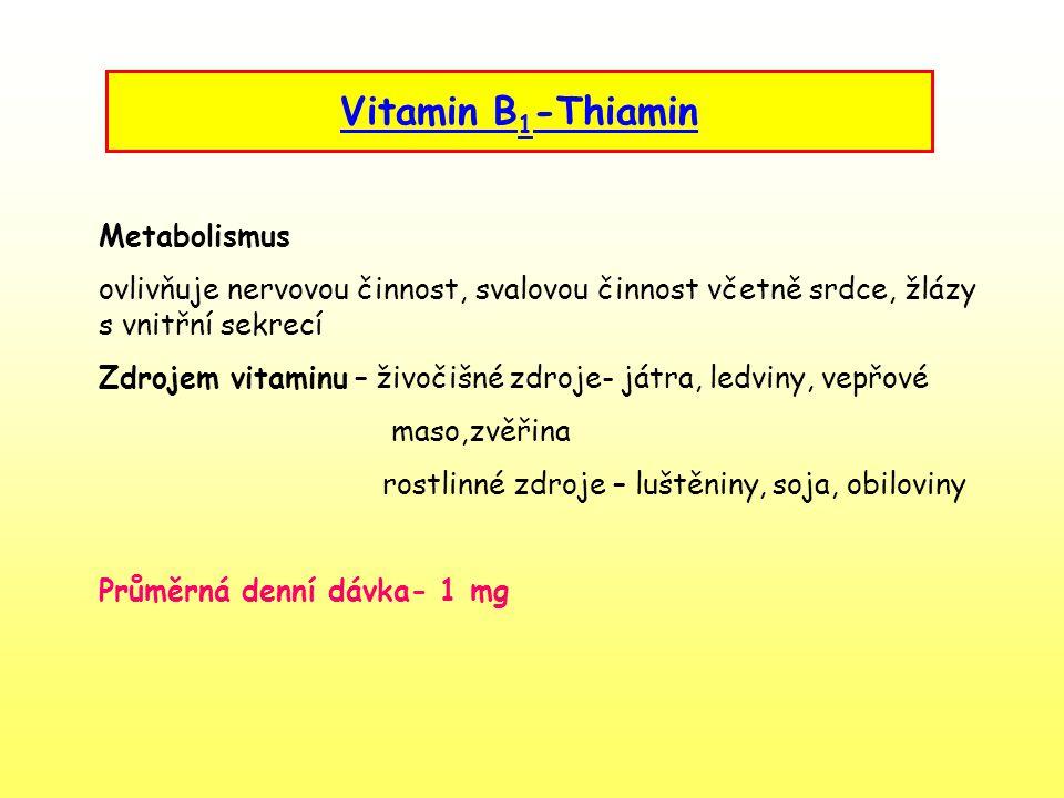 Vitamin B1-Thiamin Metabolismus