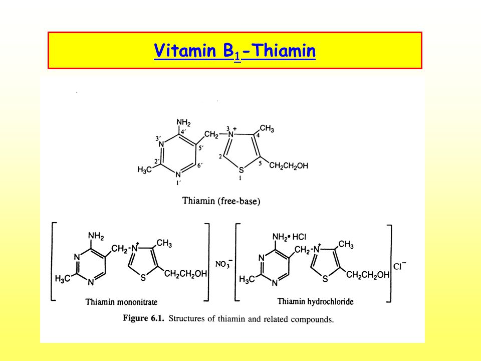 Vitamin B1-Thiamin