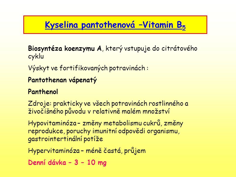 Kyselina pantothenová –Vitamin B5