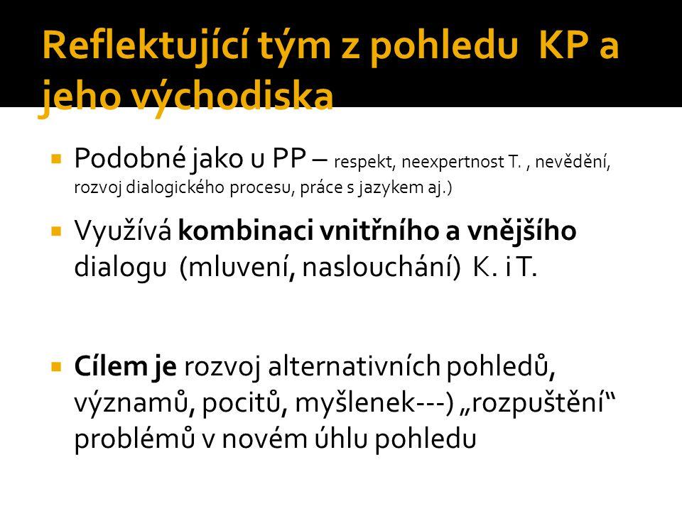 Reflektující tým z pohledu KP a jeho východiska