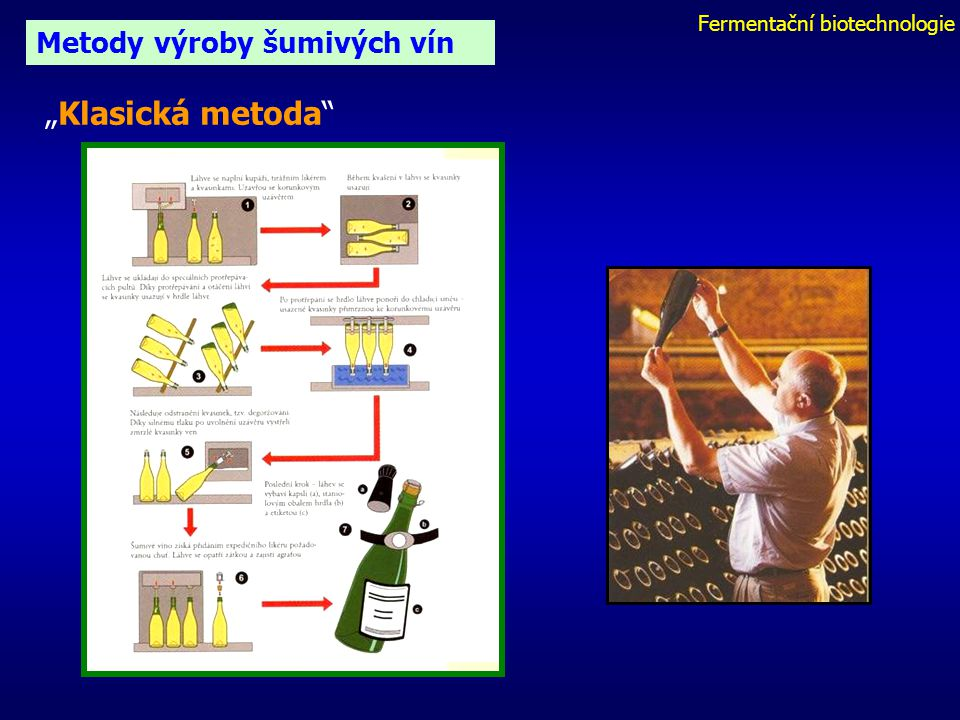 Fermentační biotechnologie