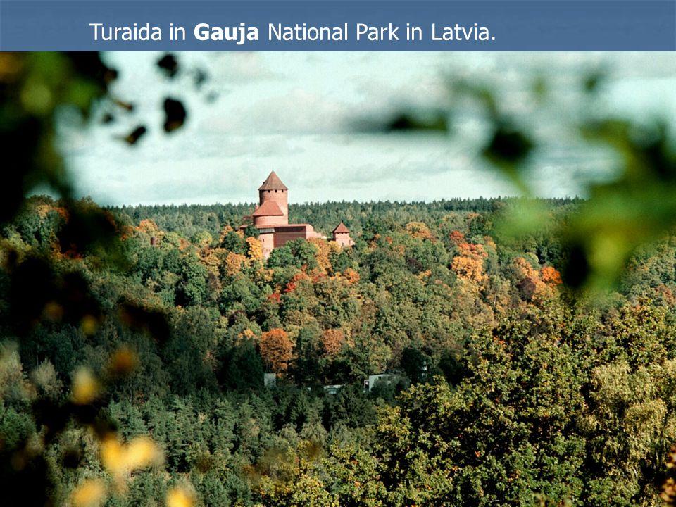Turaida in Gauja National Park in Latvia.