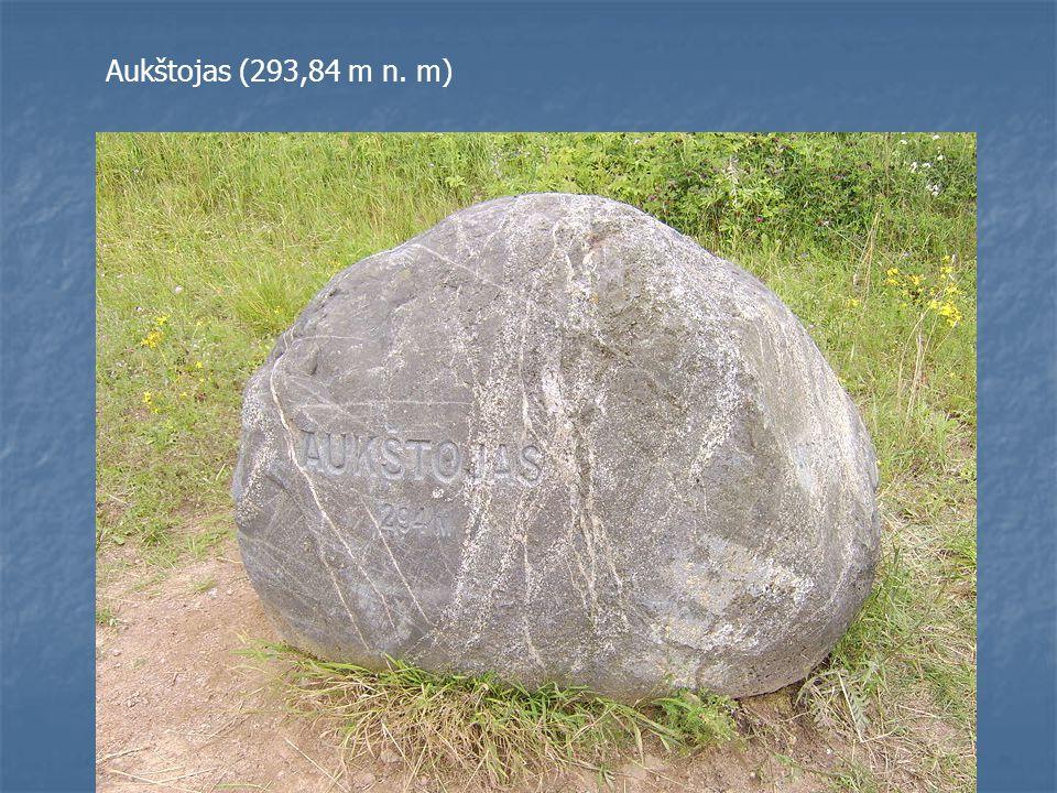 Aukštojas (293,84 m n. m)