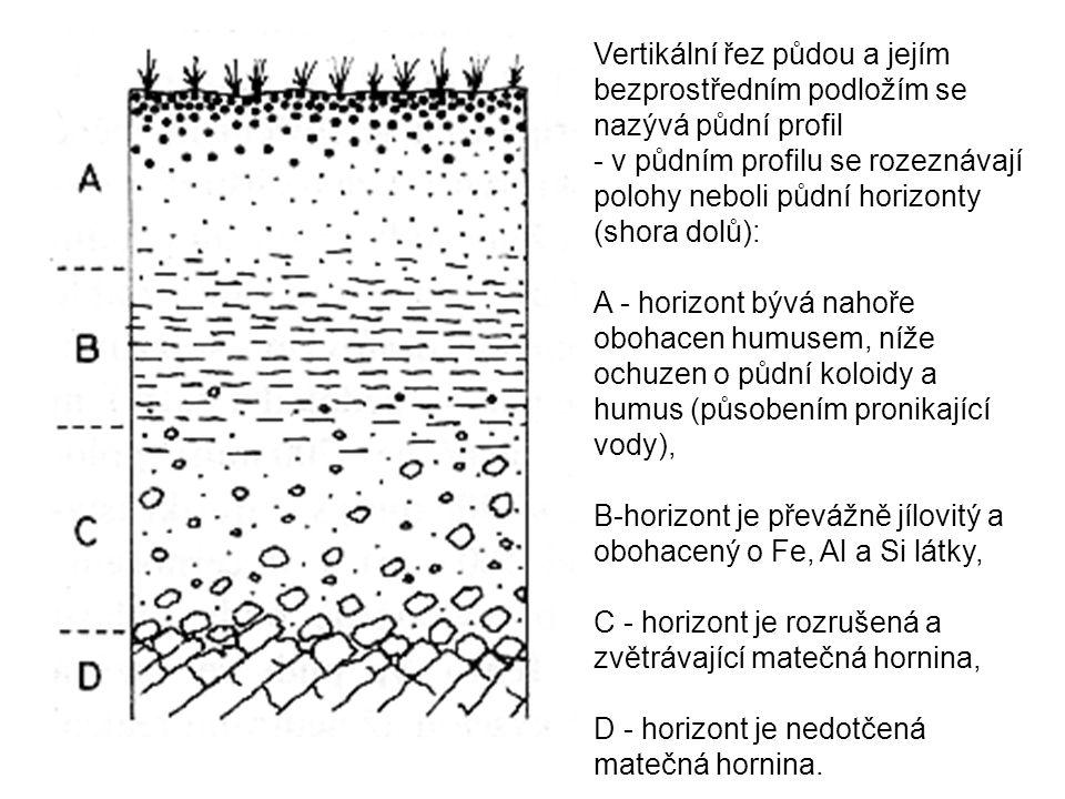 Vertikální řez půdou a jejím bezprostředním podložím se nazývá půdní profil
