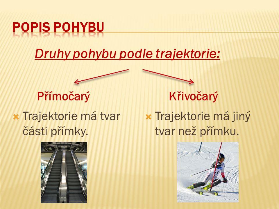 Druhy pohybu podle trajektorie: