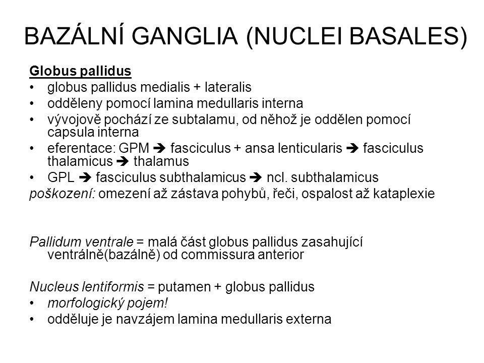 BAZÁLNÍ GANGLIA (NUCLEI BASALES)