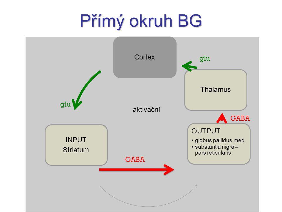 Přímý okruh BG glu glu aktivační GABA GABA Cortex Striatum INPUT
