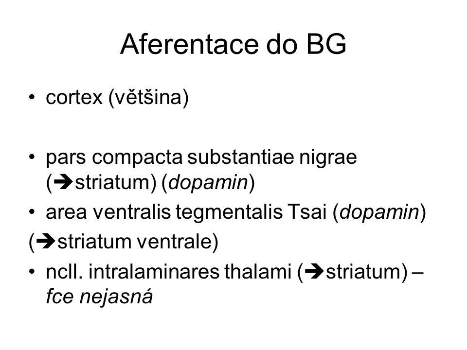 Aferentace do BG cortex (většina)