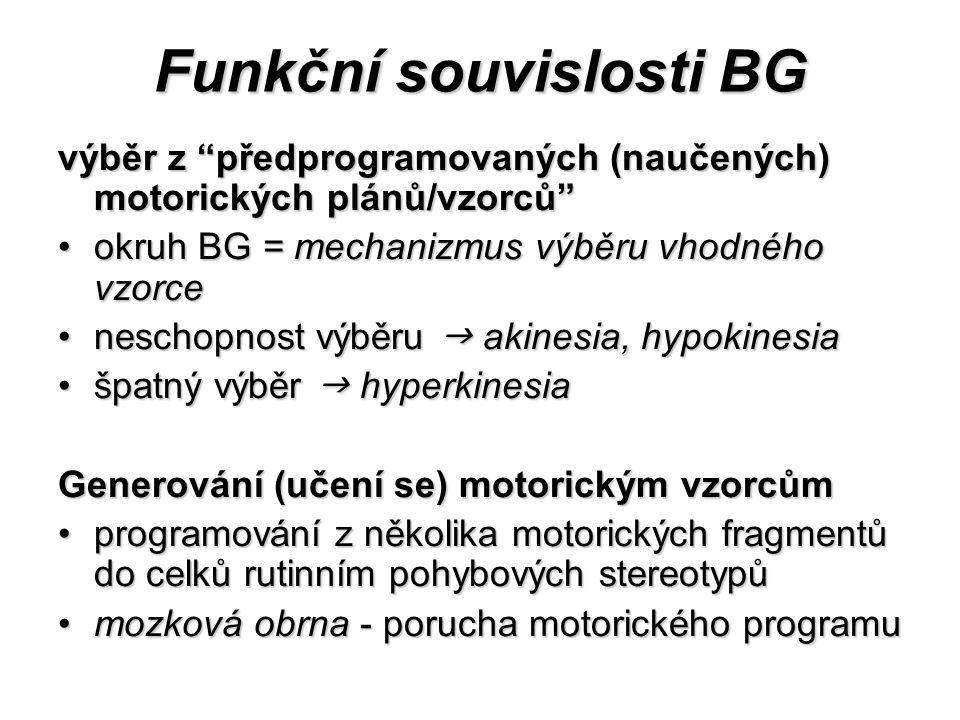 Funkční souvislosti BG