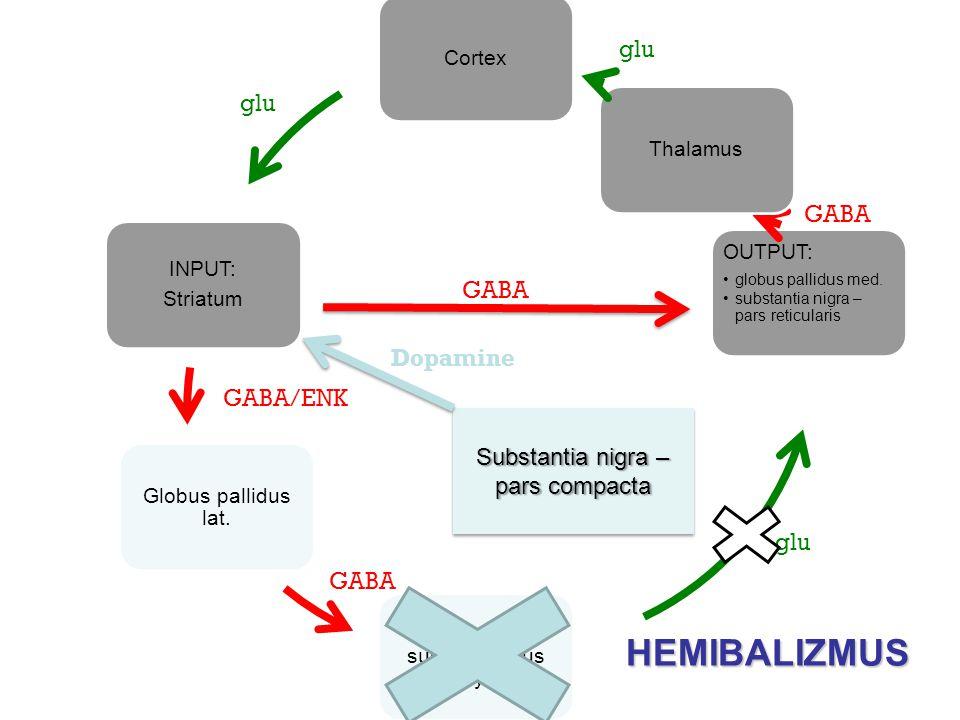 HEMIBALIZMUS glu glu GABA GABA Dopamine GABA/ENK