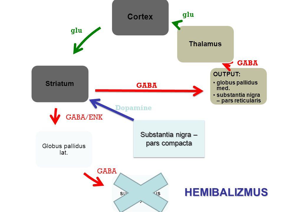 HEMIBALIZMUS Cortex Thalamus Striatum glu glu GABA GABA Dopamine