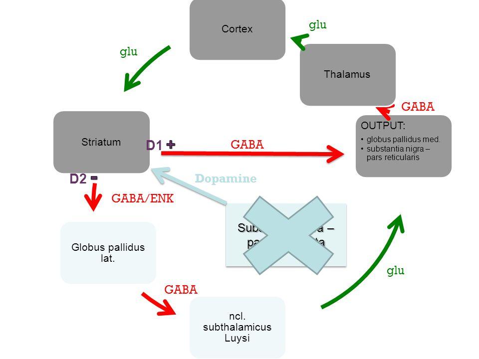 D1 + D2 - glu glu GABA GABA Dopamine GABA/ENK