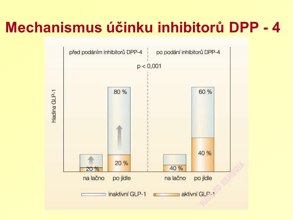 Mechanismus účinku inhibitorů DPP - 4