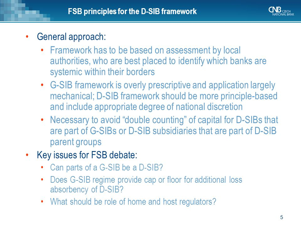 FSB principles for the D-SIB framework