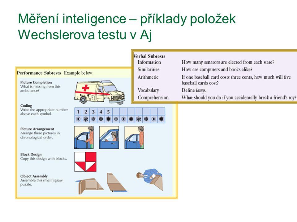 Měření inteligence – příklady položek Wechslerova testu v Aj