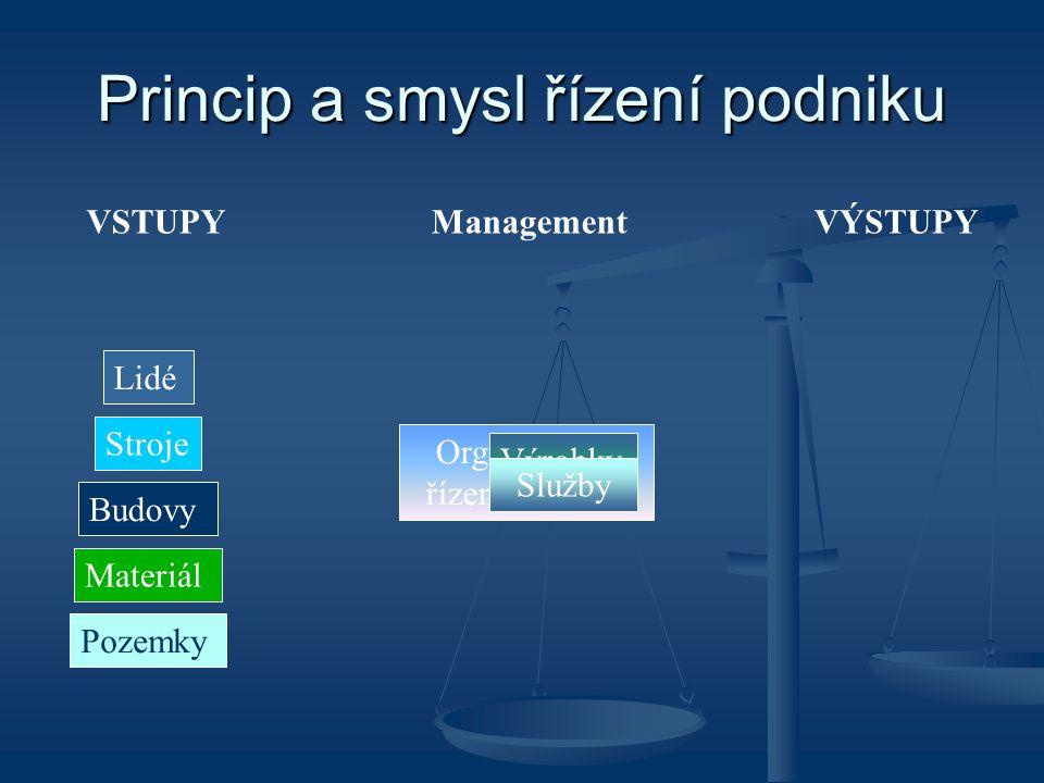 Princip a smysl řízení podniku