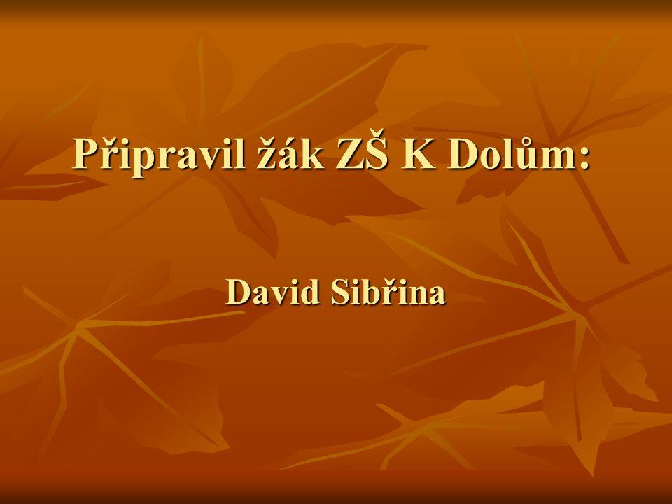 Připravil žák ZŠ K Dolům: David Sibřina