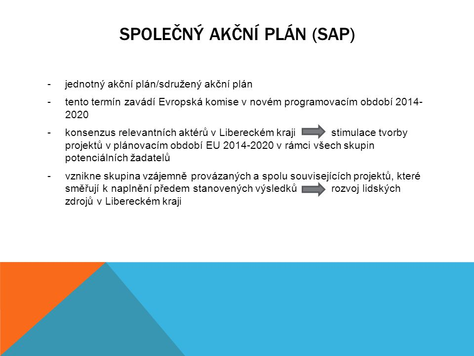 Společný akční plán (SAP)