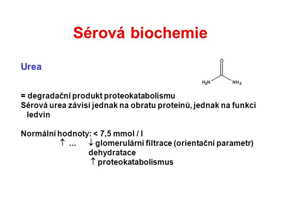 Sérová biochemie Urea = degradační produkt proteokatabolismu