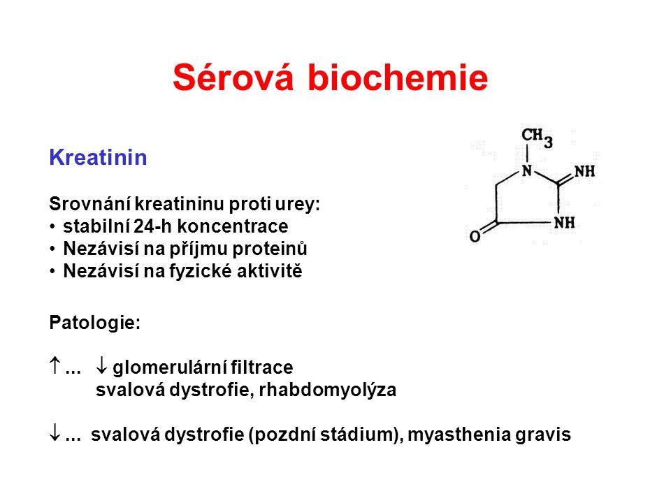 Sérová biochemie Kreatinin Srovnání kreatininu proti urey: