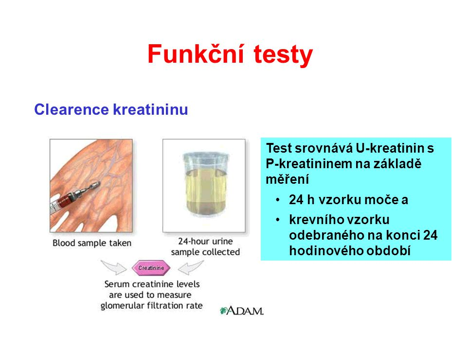 Funkční testy Clearence kreatininu