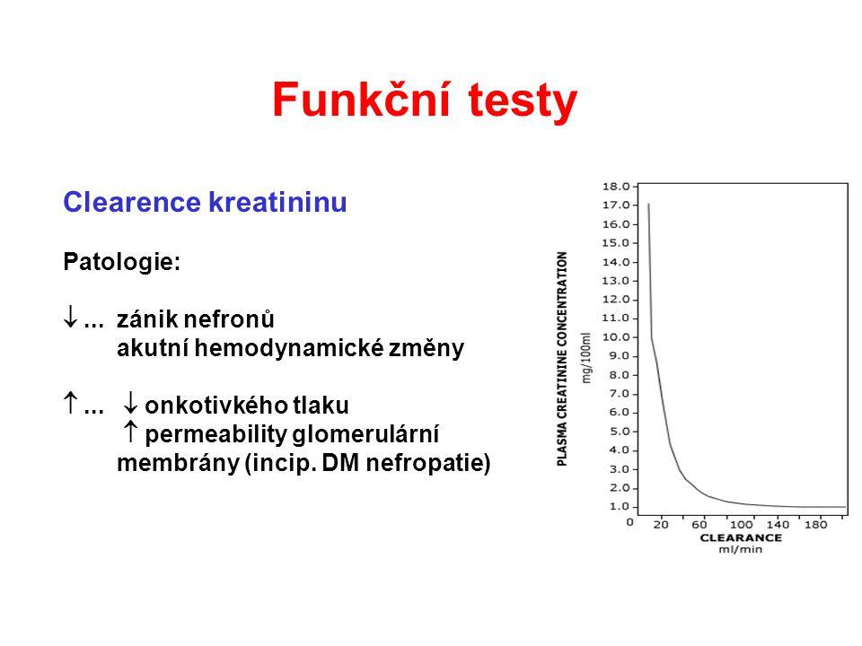 Funkční testy Clearence kreatininu Patologie:  ... zánik nefronů