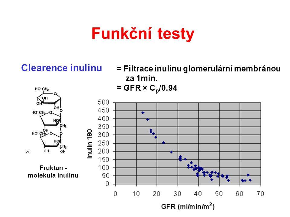 Fruktan - molekula inulinu
