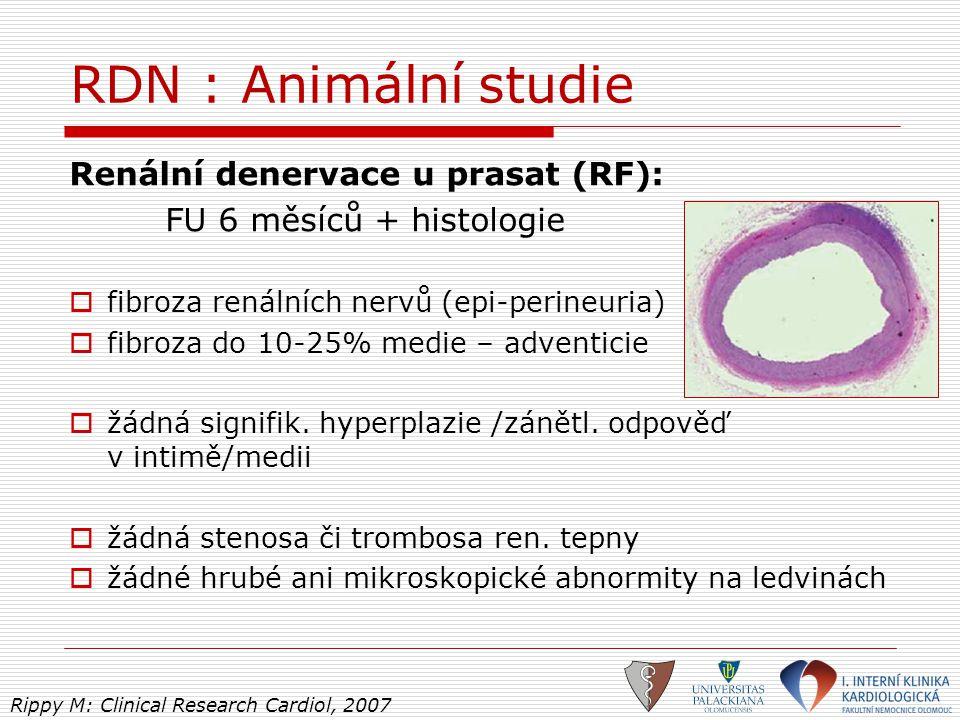 RDN : Animální studie Renální denervace u prasat (RF):