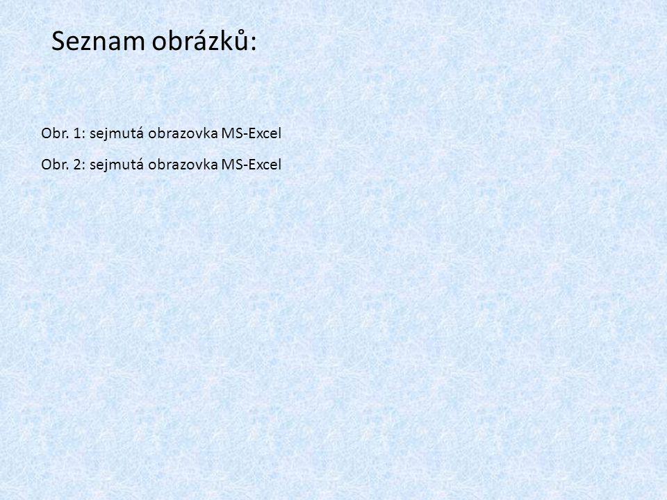 Seznam obrázků: Obr. 1: sejmutá obrazovka MS-Excel