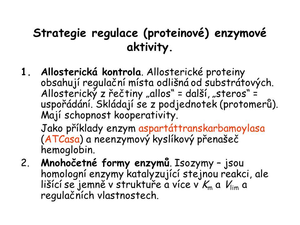 Strategie regulace (proteinové) enzymové aktivity.