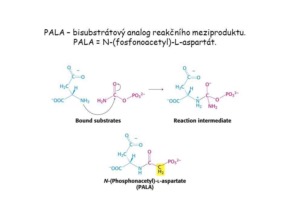 PALA – bisubstrátový analog reakčního meziproduktu