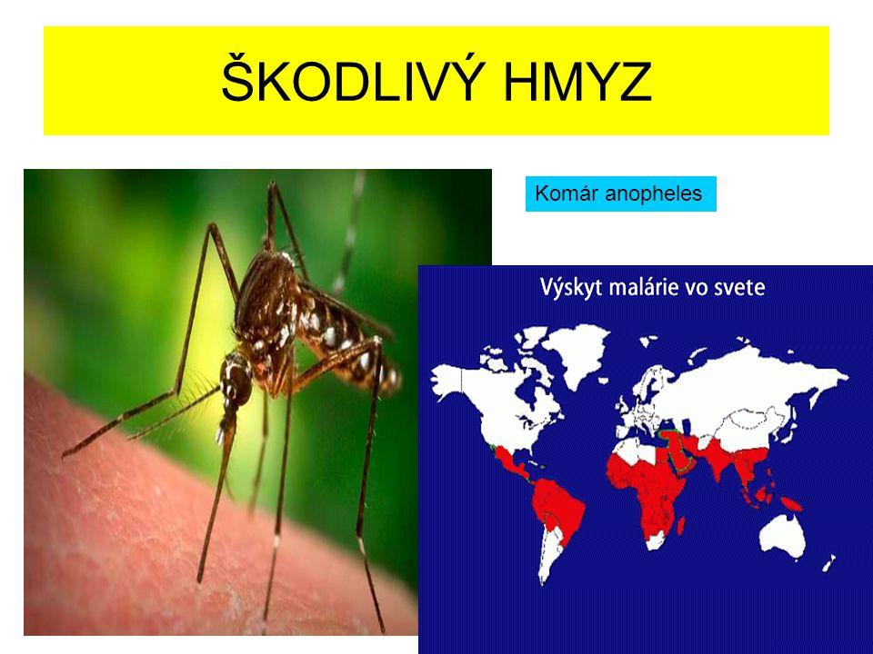 ŠKODLIVÝ HMYZ Komár anopheles