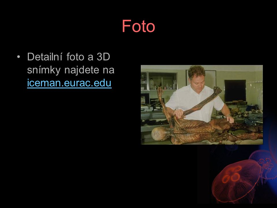 Foto Detailní foto a 3D snímky najdete na iceman.eurac.edu
