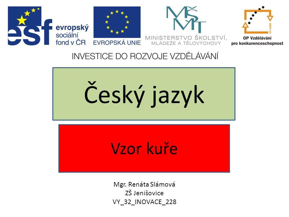 Český jazyk Vzor kuře Mgr. Renáta Slámová ZŠ Jenišovice