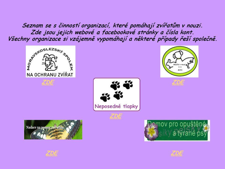Seznam se s činností organizací, které pomáhají zvířatům v nouzi.