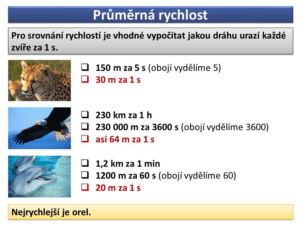 Průměrná rychlost Pro srovnání rychlostí je vhodné vypočítat jakou dráhu urazí každé zvíře za 1 s. 150 m za 5 s (obojí vydělíme 5)