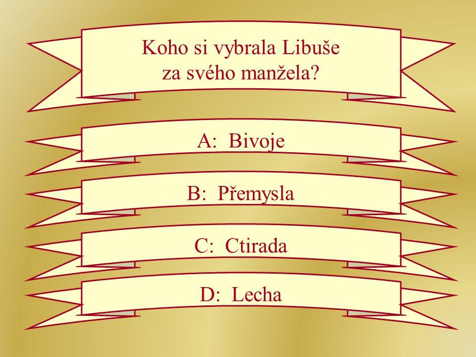 Koho si vybrala Libuše za svého manžela A: Bivoje B: Přemysla C: Ctirada D: Lecha