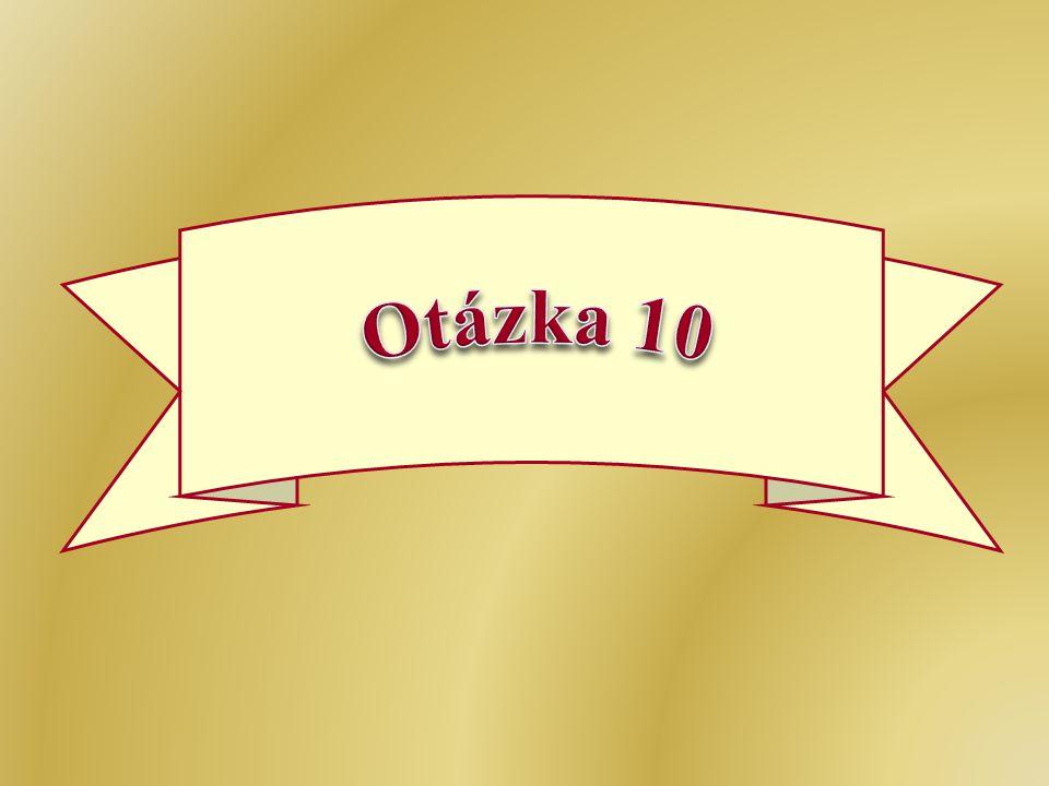 Otázka 10