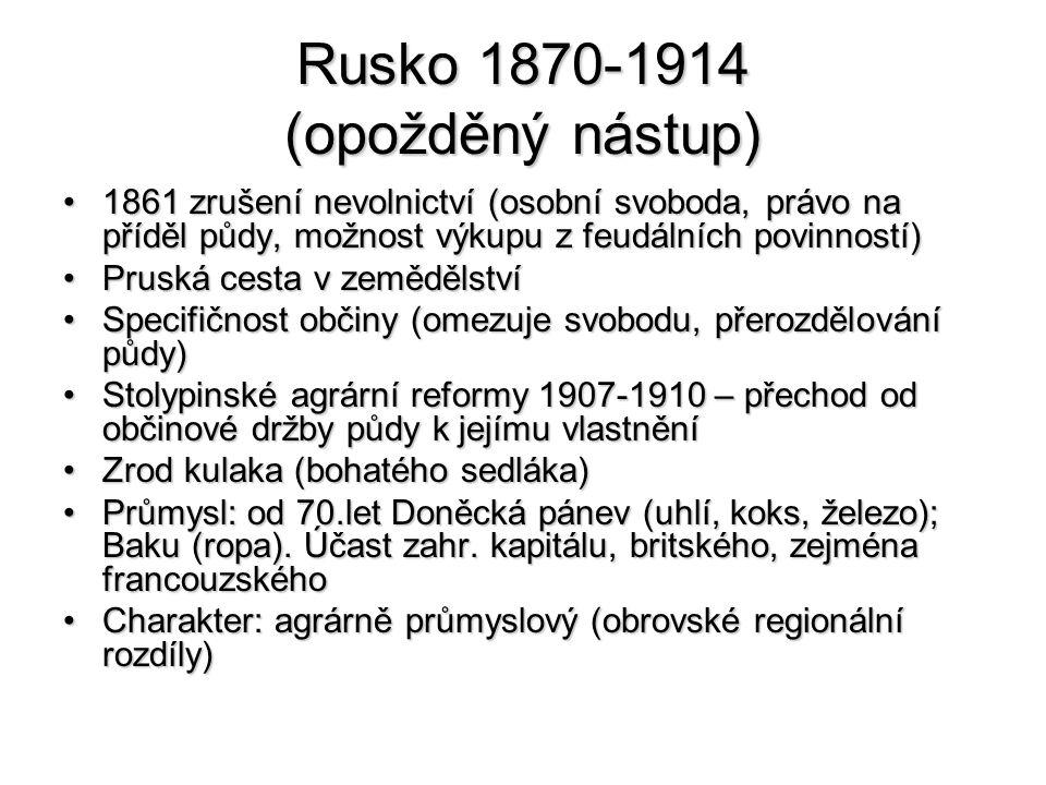 Rusko 1870-1914 (opožděný nástup)