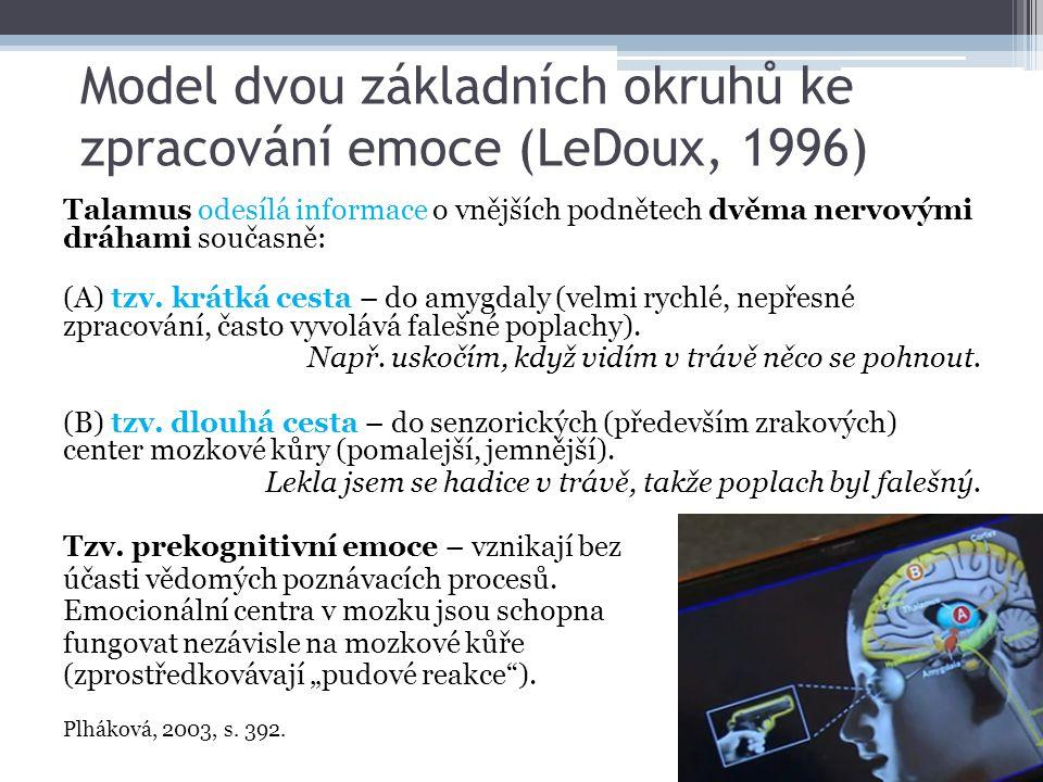Model dvou základních okruhů ke zpracování emoce (LeDoux, 1996)
