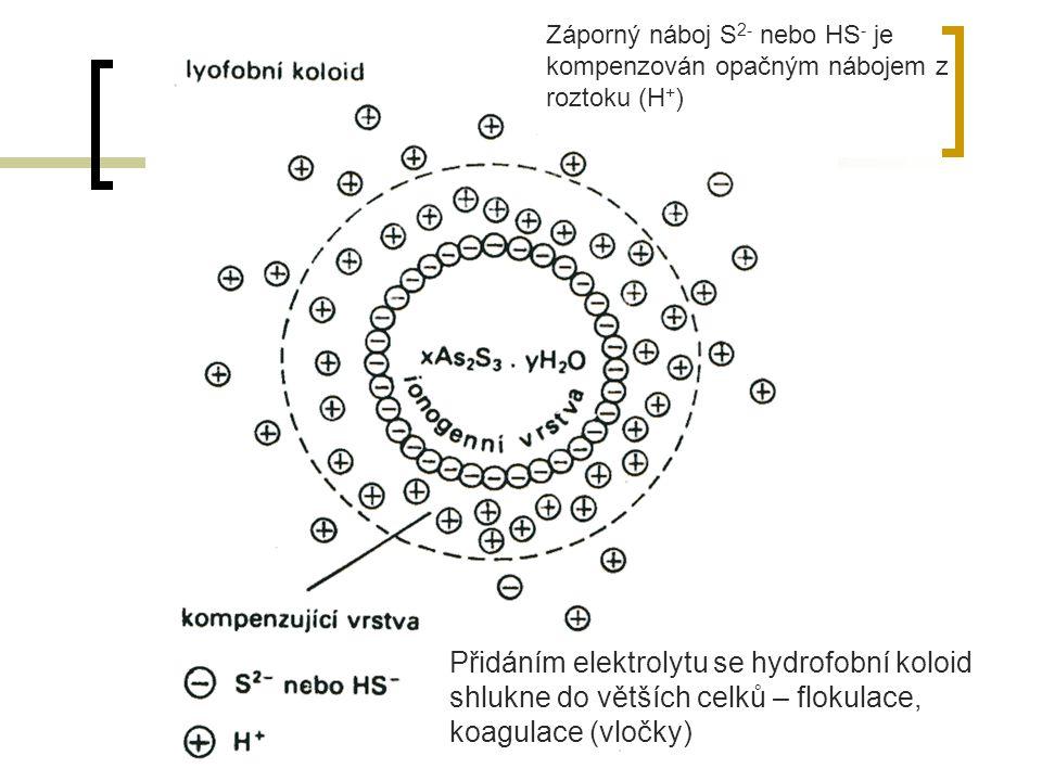 Záporný náboj S2- nebo HS- je kompenzován opačným nábojem z roztoku (H+)