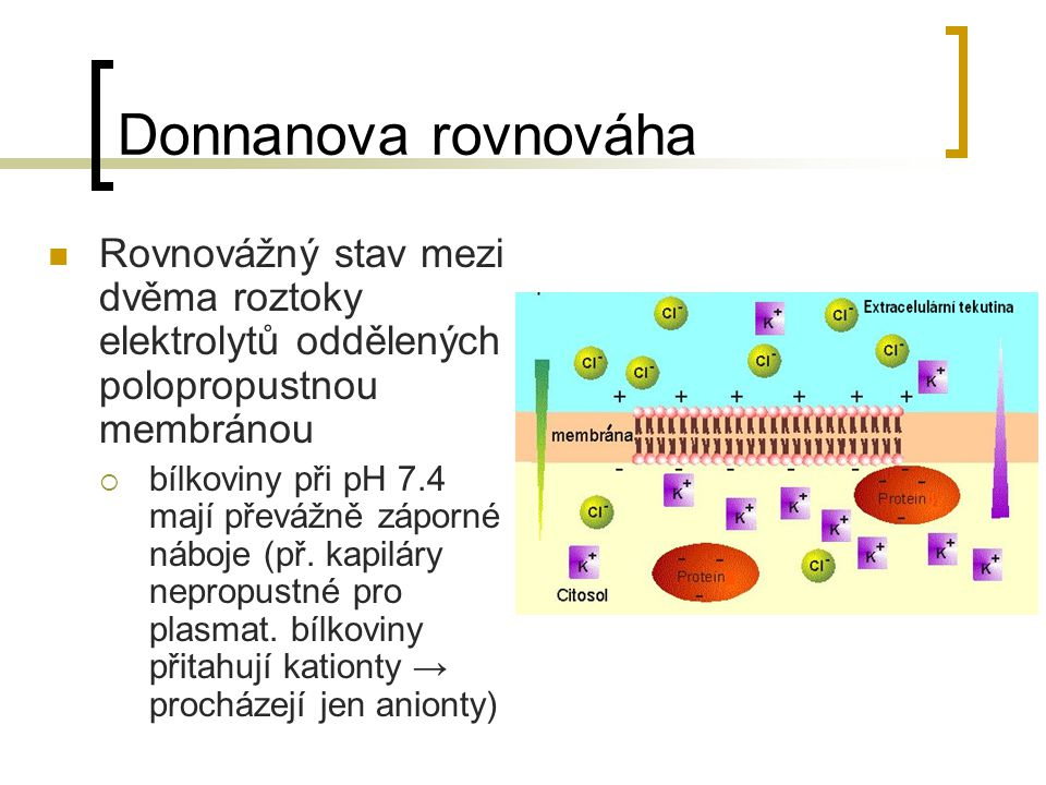 Donnanova rovnováha Rovnovážný stav mezi dvěma roztoky elektrolytů oddělených polopropustnou membránou.