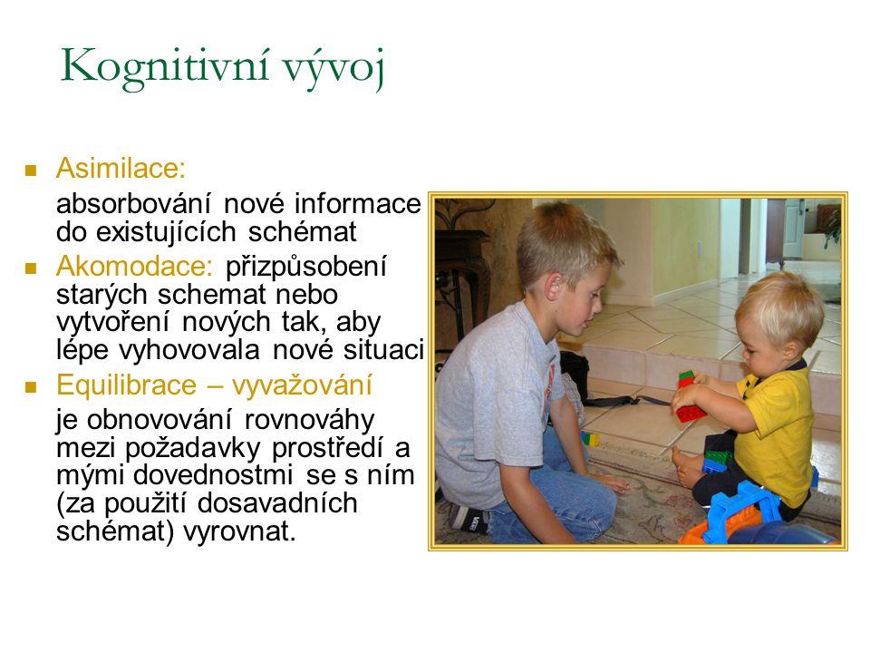 Kognitivní vývoj Asimilace: