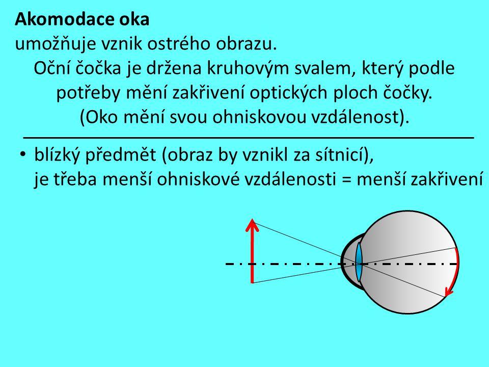 Akomodace oka umožňuje vznik ostrého obrazu.
